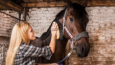 ElectroBraid® Partners with A Home for Every Horse