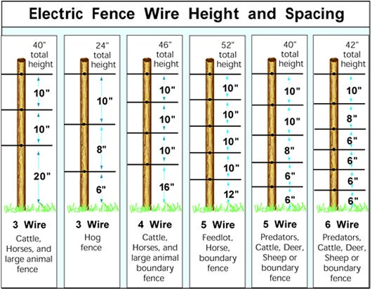 electric fence height