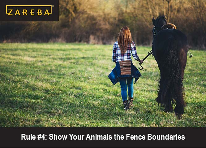 Electric Fence Guidance